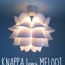 Knappa loves Melodi