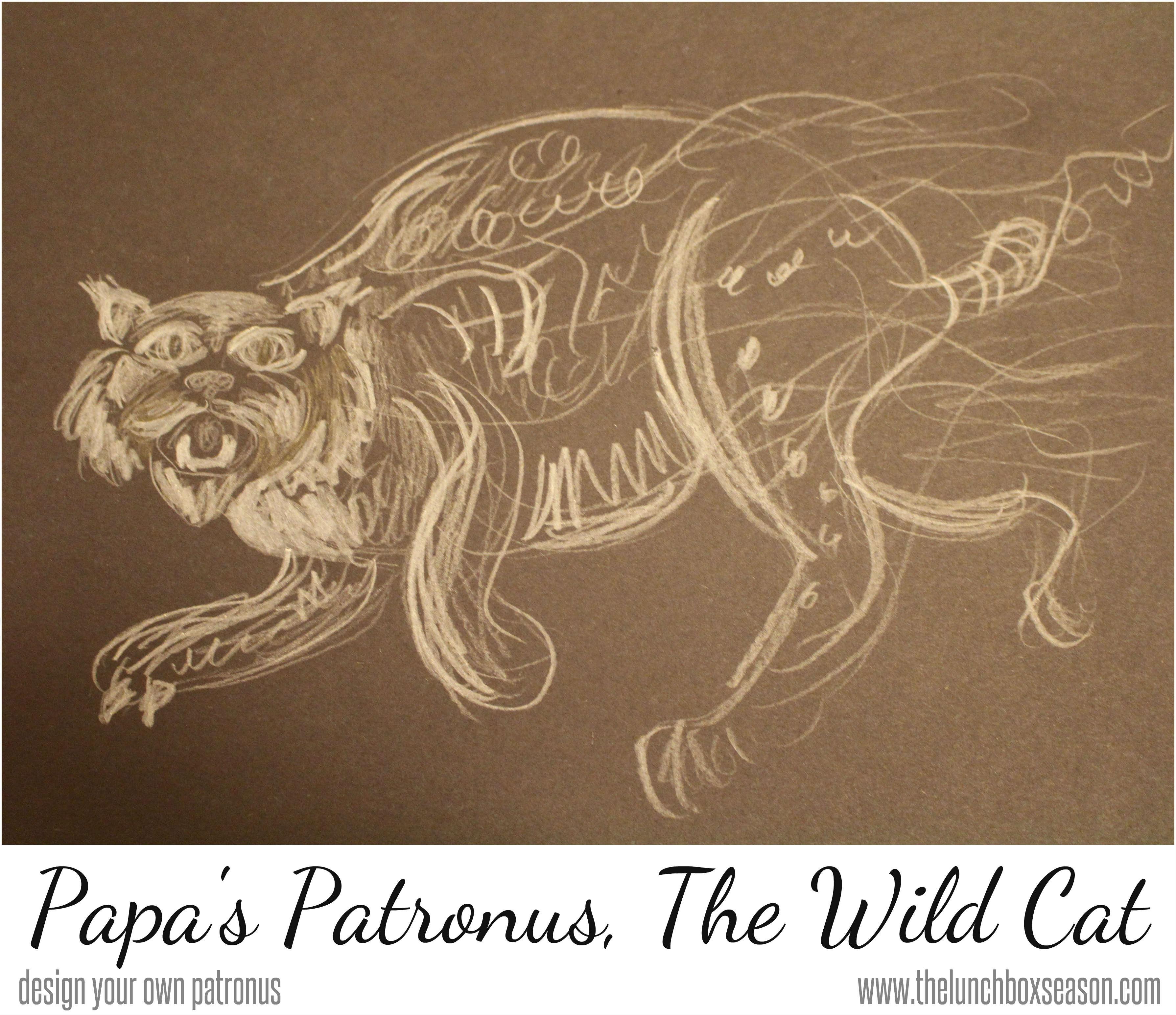 papas patronus the wild cat