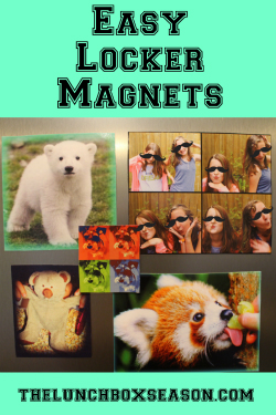 Featuremagnets