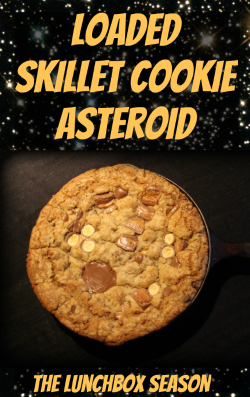 Feat Loaded Skillet Cookie Asteroid