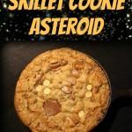 Loaded Skillet Cookie Asteroid