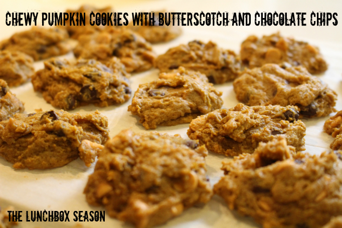 Chewy Pumpking Cookies with Butterscotch and Chocolate Chips