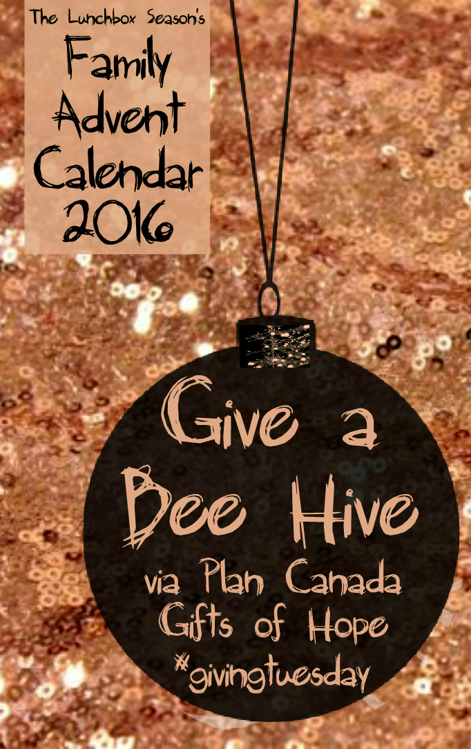 13-give-a-bee-hive-via-plan-canada-family-advent-calendar-2016