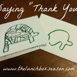 Saying Thank You from thelunchboxseason dot com