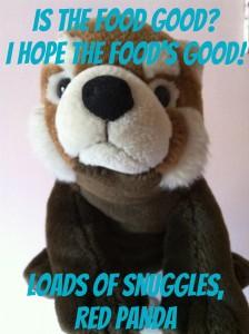 Stuffy Candids Three