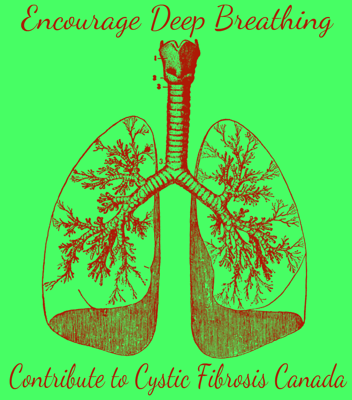 Encourage Deep breathing Contribute to CF