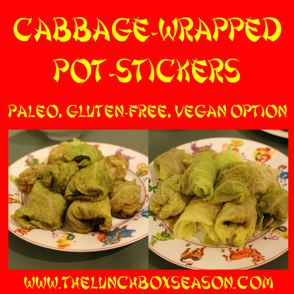 Cabbage Wrapped Potsticker Recipe