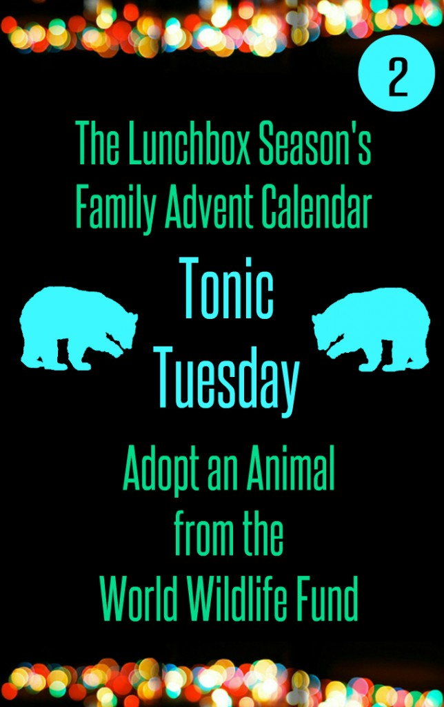 Advent Day 2 Tonic Tuesday Adopt an Animal from the WWF