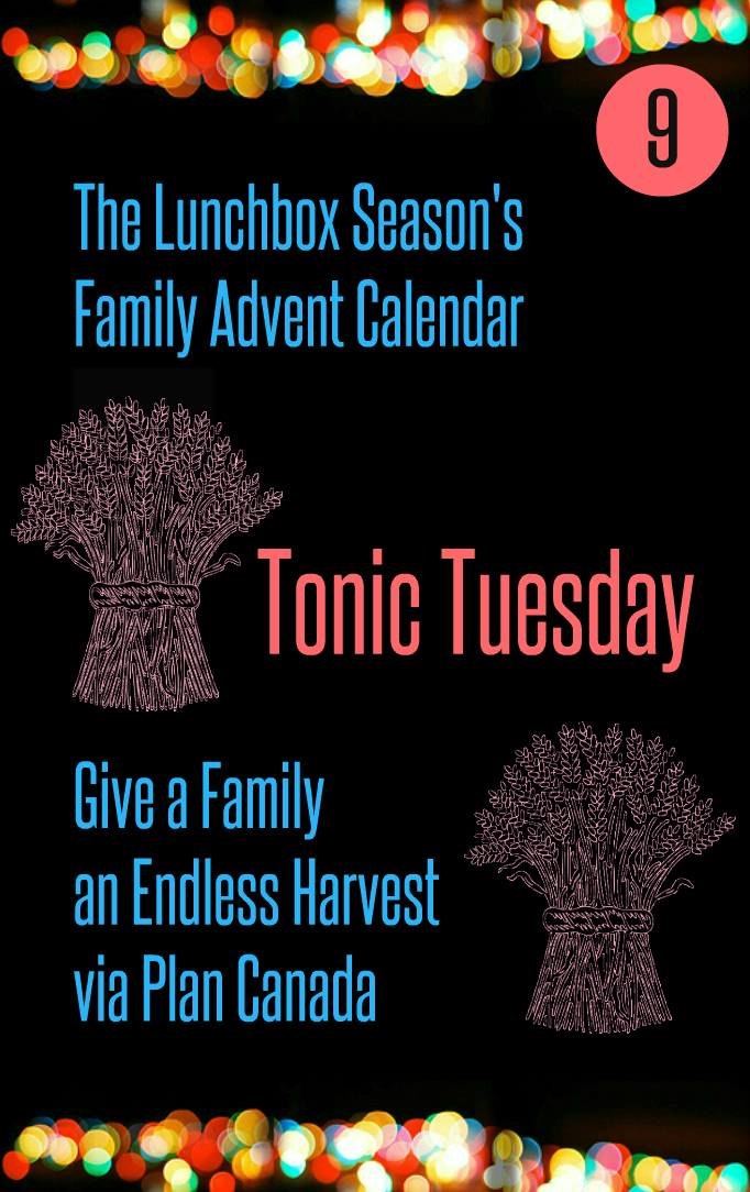 Advent Day 9 Tonic Tuesday Give a Family an Endless Harvest Via Plan Canada