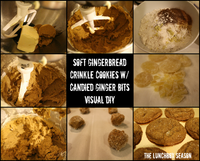 Soft Gingbread Crinkle Cookies with Candied Ginger Bits Visual DIY