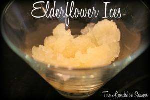 Elderflower Ices made from Snow