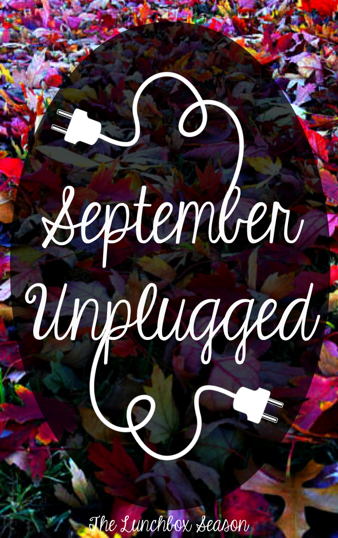 The Lunchbox Season's September Unplugged