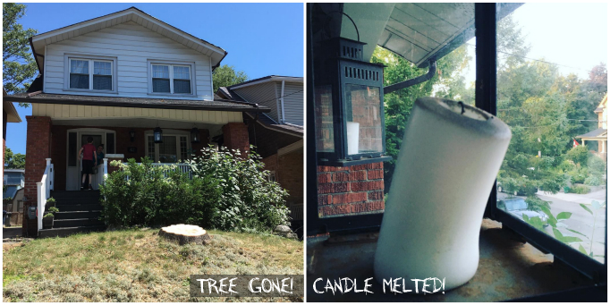 Tree Gone! Candle Melted