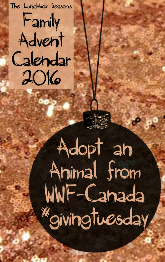 1-nov-29-adopt-an-animal-from-wwf-canada-family-advent-calendar-2016