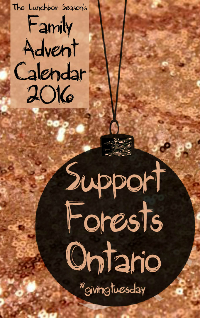 6-support-forests-ontario-family-advent-calendar-2016