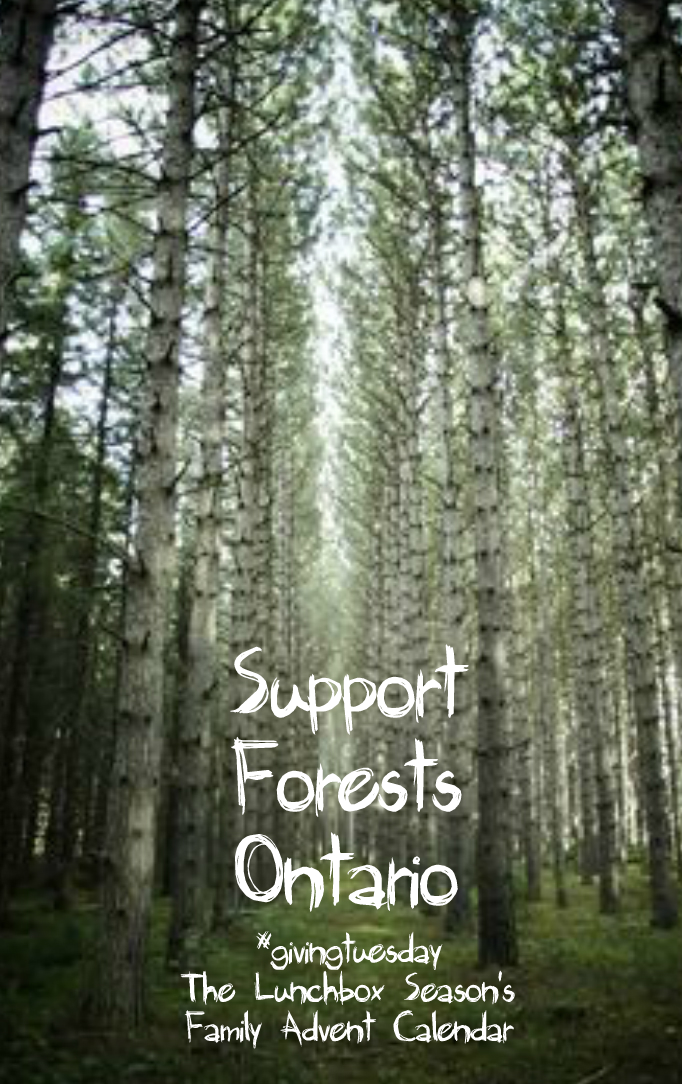6-support-forests-ontario-giving-tuesday-family-advent-calendar-2016